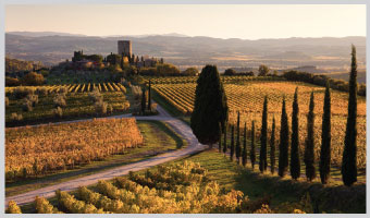 Italy: Quiet Pathways of Tuscany