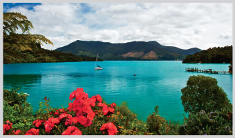 Walking New Zealand: Splendor of the South Island??