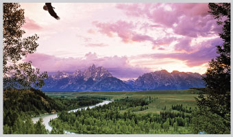 Yellowstone & Grand Teton: Walking America's Wilderness?